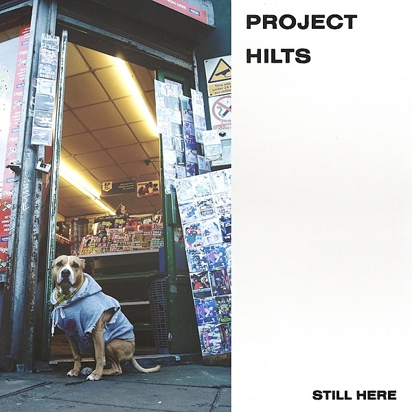 Debut EP 'Still Here' OUT NOW Listen: Still Here EP Link Thumbnail | Linktree