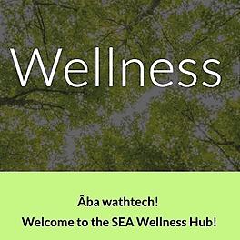 SEA Wellness Hub