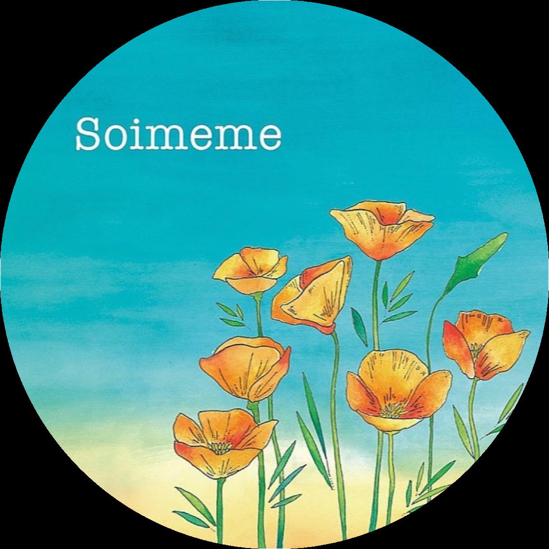 @soimemeai Profile Image | Linktree