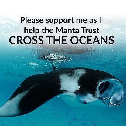 @Miriunderthesea Manta Trust Fundraising Challenge Link Thumbnail | Linktree