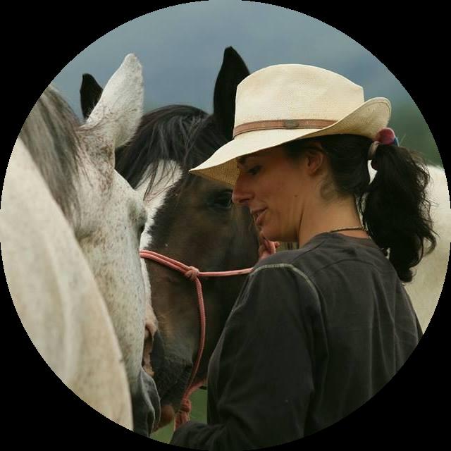 @etologiaequinamalavasi Profile Image | Linktree