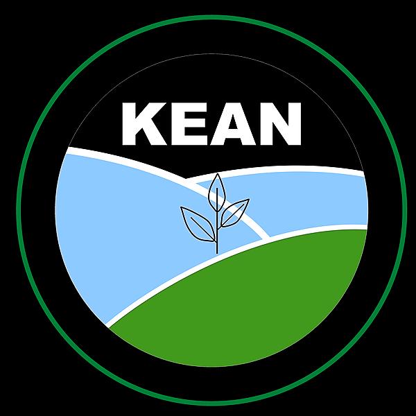 @kean.network Profile Image   Linktree