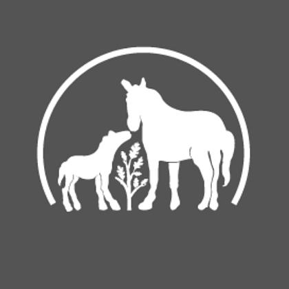 @parentingstudents Profile Image | Linktree