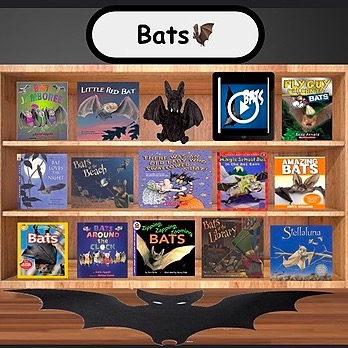 @WinterStorm Bats Library w/ Drag&Drop Activity Link Thumbnail   Linktree