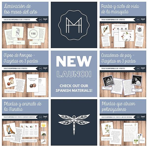 @themontessoriteacher Modern Montessori Guide & TMT- SPANISH materials COLLAB Link Thumbnail | Linktree