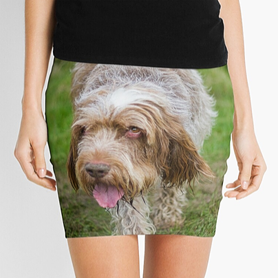 Spinone Mini Skirts