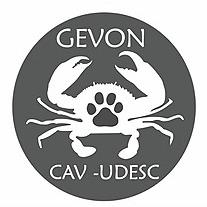 GEVON/CAV (Gevononco) Profile Image | Linktree