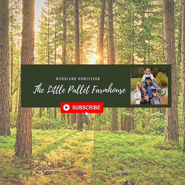 YouTube: Our Woodland Homestead
