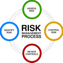 Project risk management training form