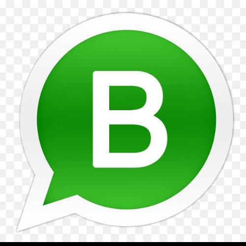 Beekipedia / Abelhazum Whatsapp