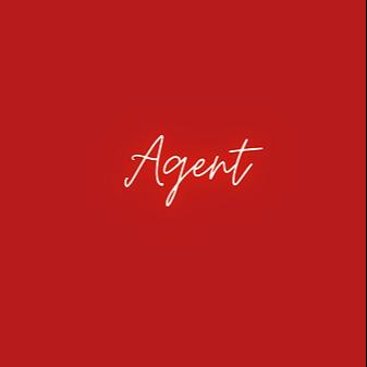 Voice Agent