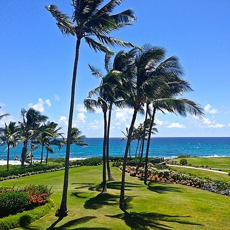 @themilesgenie Best Ways To Redeem Amex And Chase Points For Hawaii Link Thumbnail | Linktree