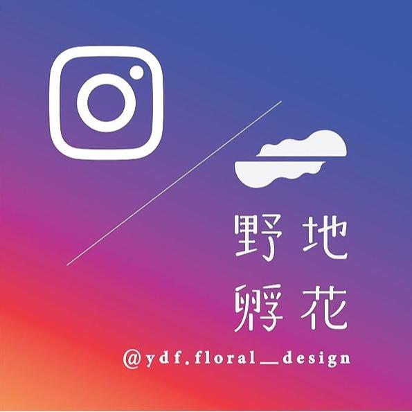 野地孵花 ·  花藝設計 野地孵花·Instagram Link Thumbnail | Linktree