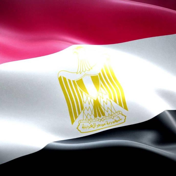 متجر مصر