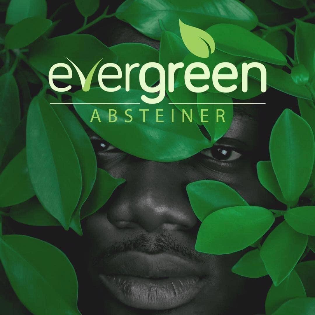 @absteinermusic (evergreenalbum) Profile Image | Linktree