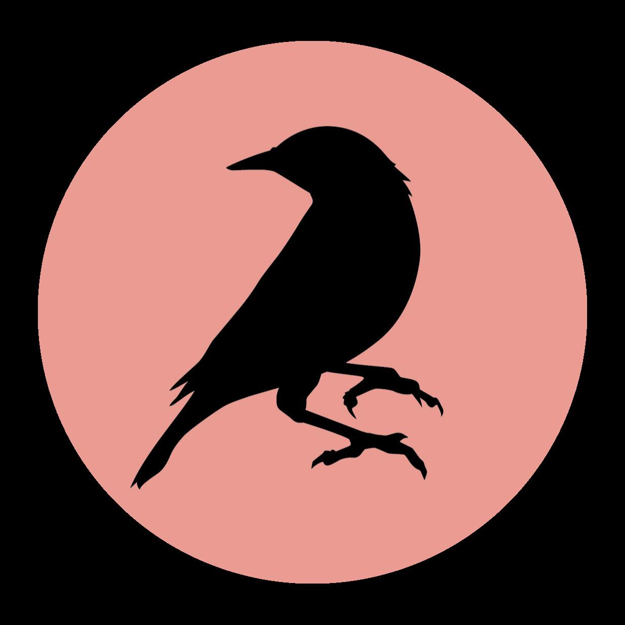 @blackbirddoughnuts Profile Image | Linktree