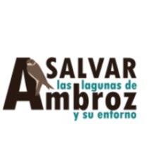 @salvarlagunasambroz1 Profile Image | Linktree