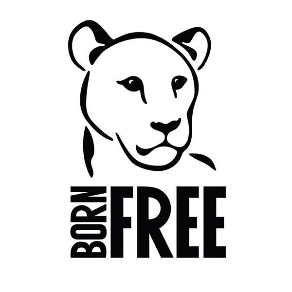 Ritchi Edwards Run Wild with Born Free  Link Thumbnail | Linktree