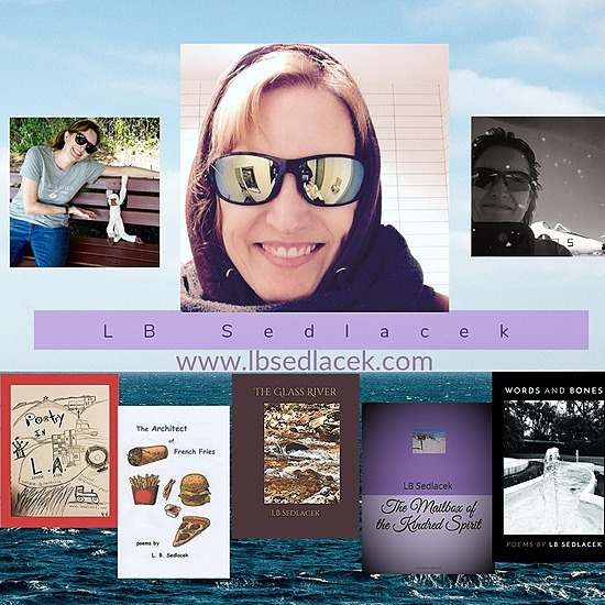 @lbsedlacek LB Sedlacek - Amazon.com store Link Thumbnail   Linktree