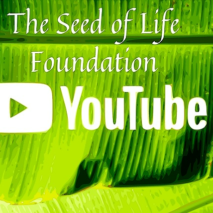 The Seed of Life Foundation Youtube Link Thumbnail | Linktree