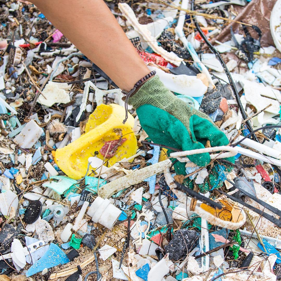 Break Free From Plastic Pollution