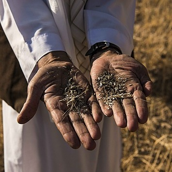 @wfp 🔵 DONATE TO AFGHANISTAN Link Thumbnail | Linktree