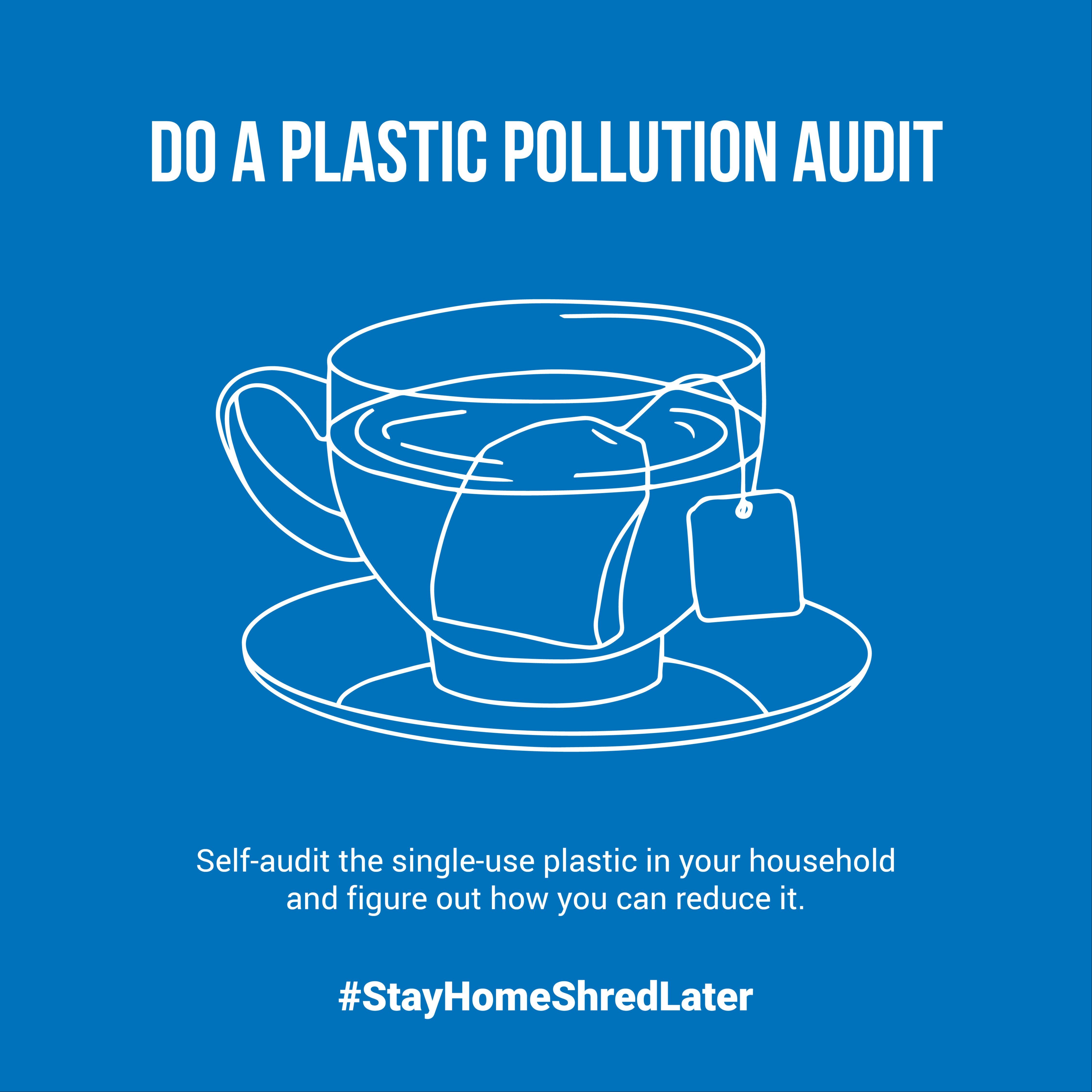 Plastic Pollution Audit