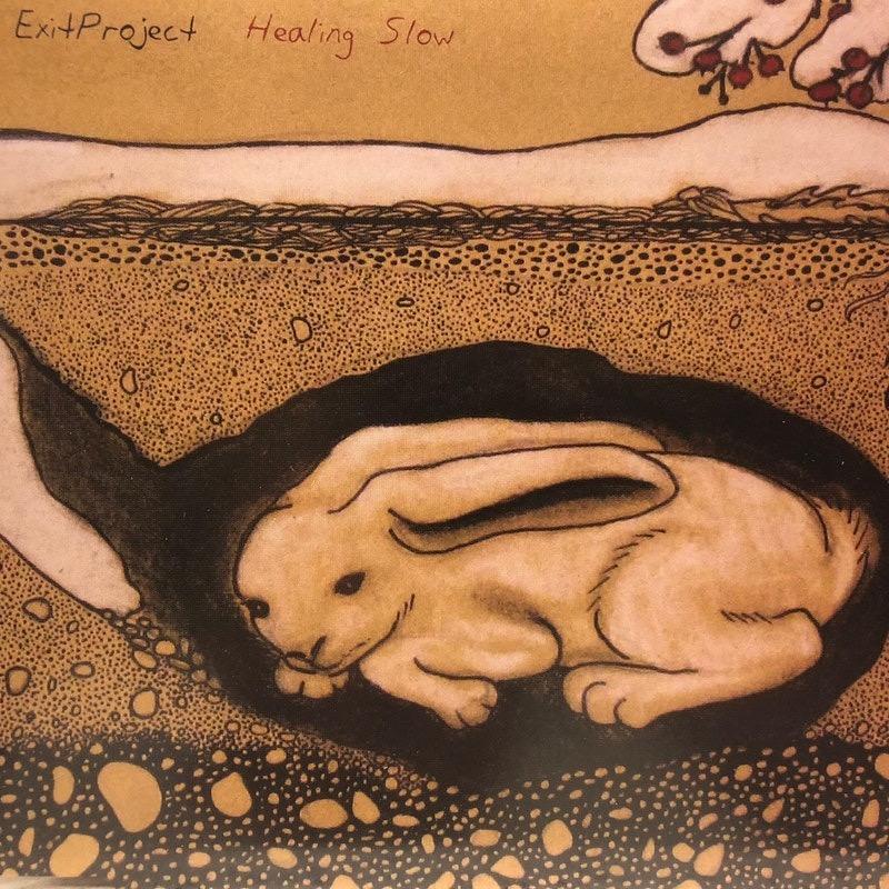 Listen: Healing Slow by ExitProject feat. Emi Jarvi
