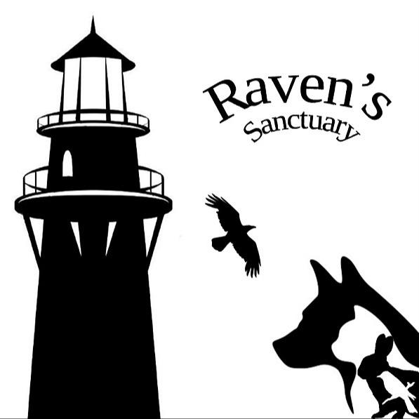 Association RAVEN RAVEN'S SANCTUARY : Site Link Thumbnail   Linktree