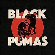 @BlackPumas Profile Image | Linktree