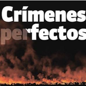 📗 Abogades Ambientalistas [PRENSA] #DelitosAmbientales en El Ciudadano Link Thumbnail   Linktree