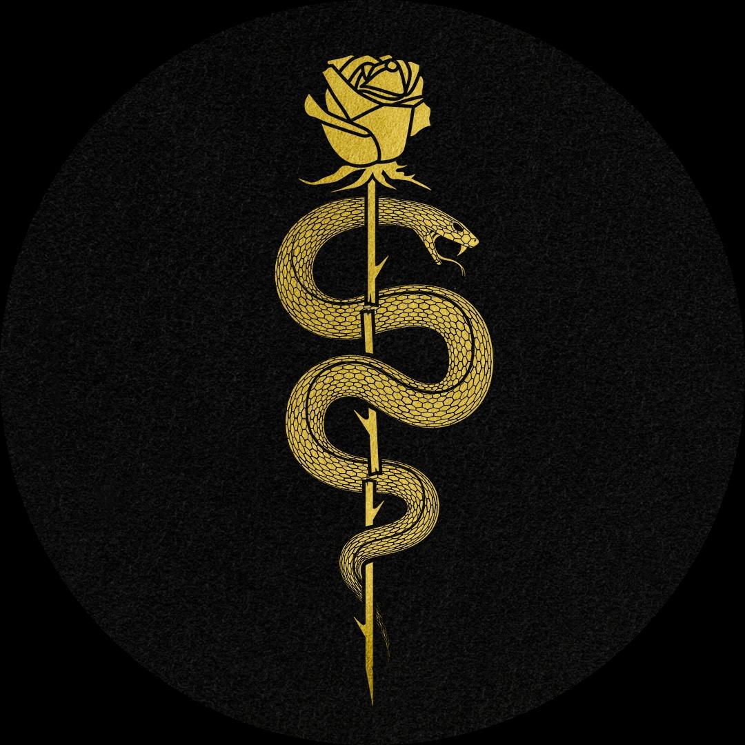 Kumarion (kumarionmusic) Profile Image | Linktree