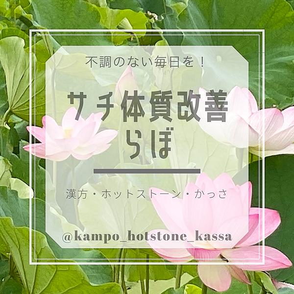 @sachi410 Profile Image | Linktree