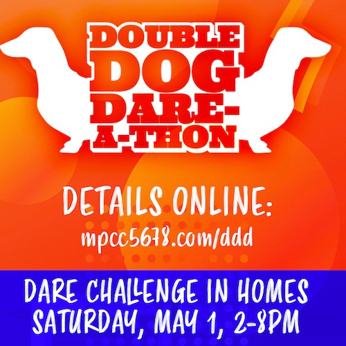 @5678parents Double Dog Dare-a-thon 2021 Registration!  Link Thumbnail | Linktree