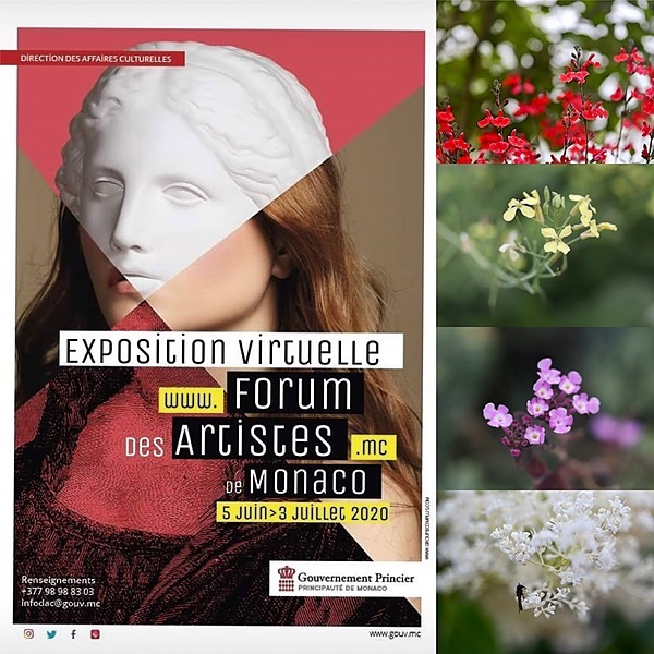 """Bolonie FORUM DES ARTISTES, Monaco""""The earth smiles with flowers"""" A walk around the gardens of the perfume factory in Grasse Link Thumbnail   Linktree"""