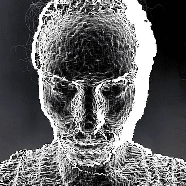 @apricolypse Profile Image | Linktree