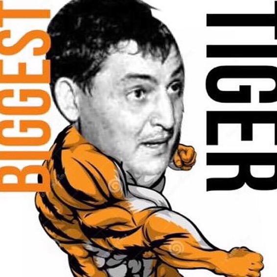 The Biggest Tiger (TheBiggestTiger) Profile Image | Linktree