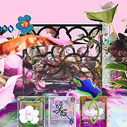 @FantasiaMalware Orchid Collector #1 Link Thumbnail | Linktree