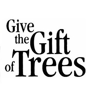 The Seed of Life Foundation Gift a Tree to share Eternal Love Link Thumbnail | Linktree