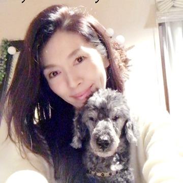 @yumeinuya Profile Image | Linktree