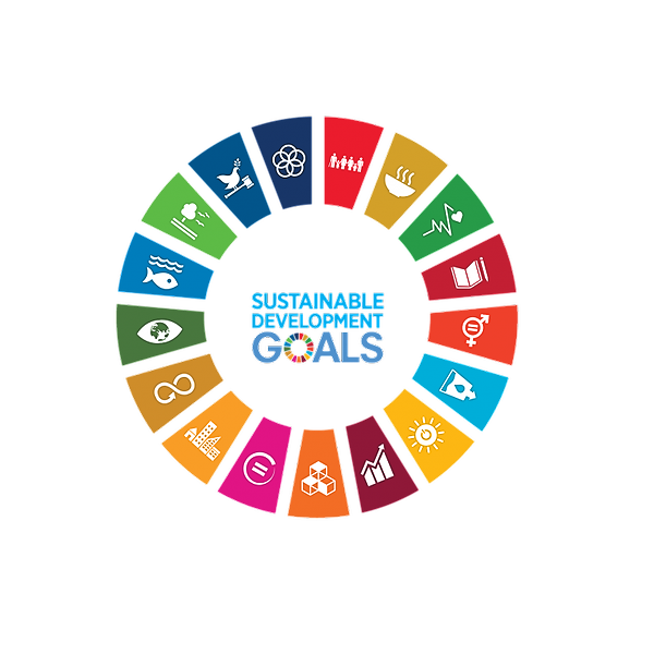 #tlugreenmonth2021 09.04.2021: What are the Sustainable Development Goals and how they affect our lives? (find the video here) Link Thumbnail | Linktree