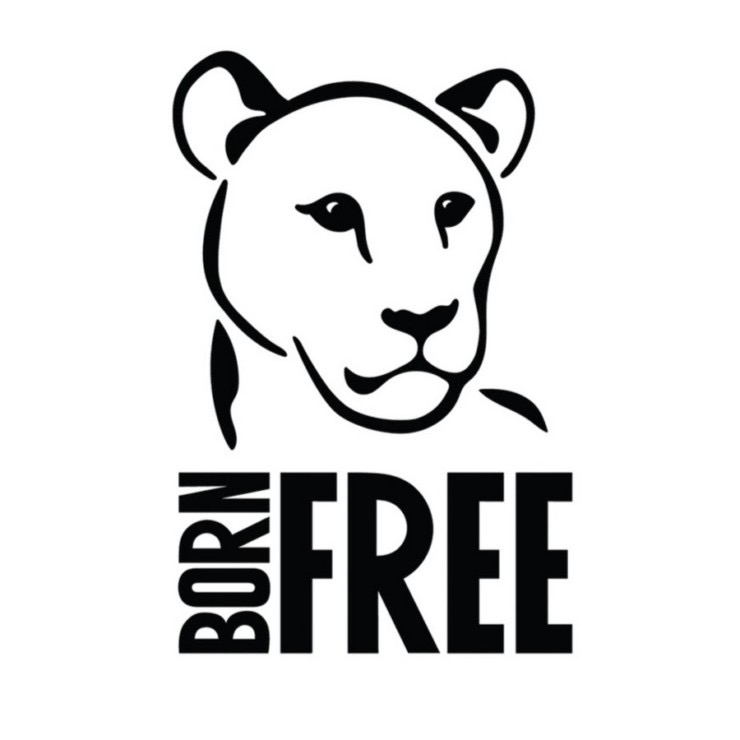 Born Free - Adopt an Animal www.bornfree.org.uk
