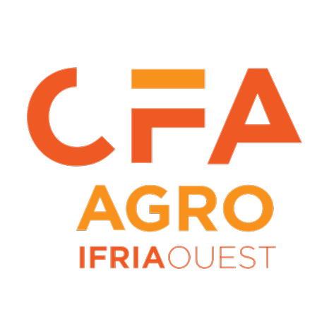 @IFRIAOUEST SITE INTERNET IFRIA OUEST Link Thumbnail   Linktree