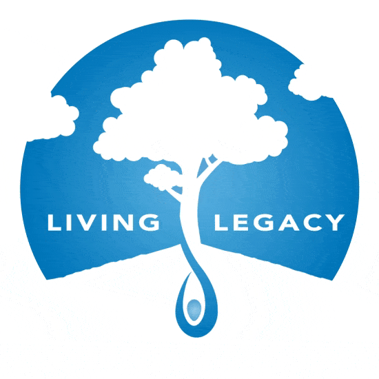 The Seed of Life Foundation Tiktok Link Thumbnail | Linktree