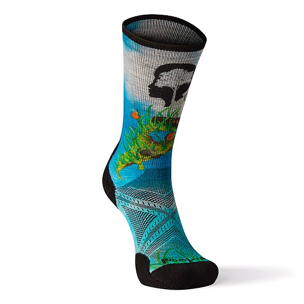 Get the Slice of Nature sock!