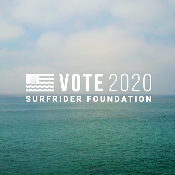 Vote 2020 - Lakey Peterson