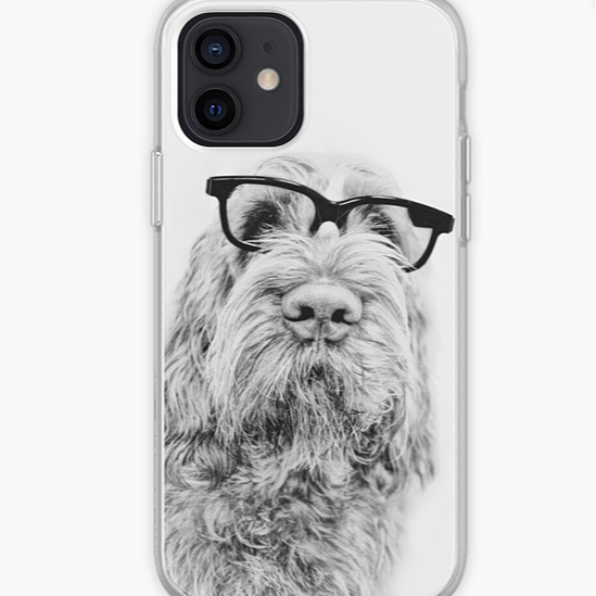 Spinone iPhone Cases