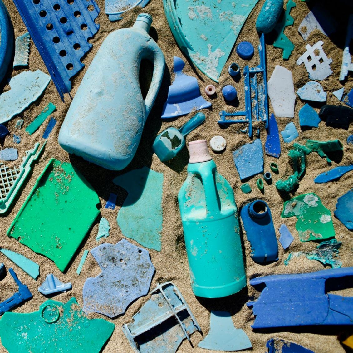 2019 Beach Cleanup Report