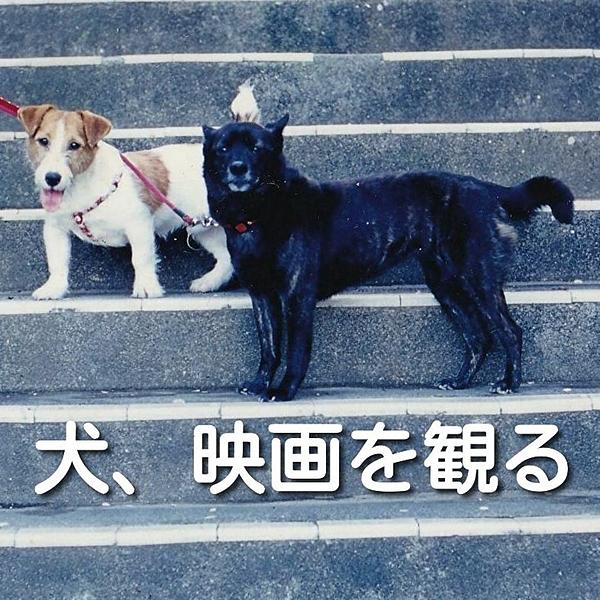 @dogmovie Profile Image | Linktree