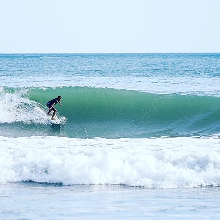 Room to Roam End of Summer Surf Season Special Link Thumbnail | Linktree